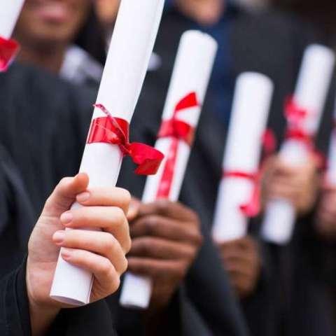 Comprar diploma de pedagogia