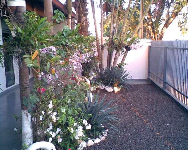 Kasa & cia - Garden - Paisagismo e Jardinagem perto do jd aeroporto