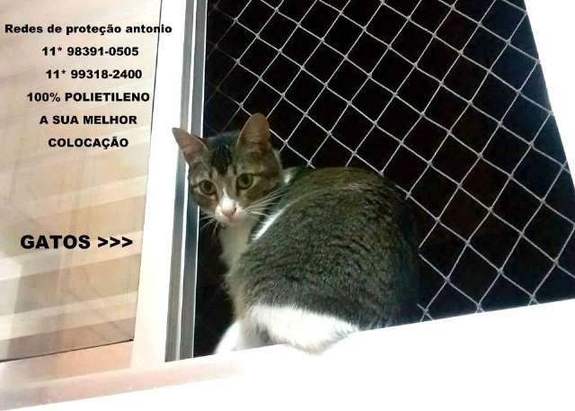Redes de Proteção na Rua Zacarias de Gois, Campo Belo, (11) 5524-7412