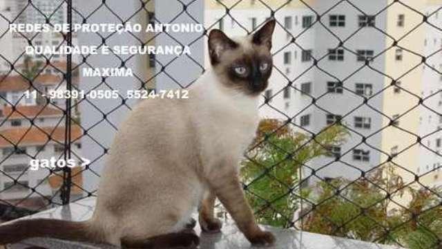 Redes de Proteção para Gatos, (11)  98391-0505