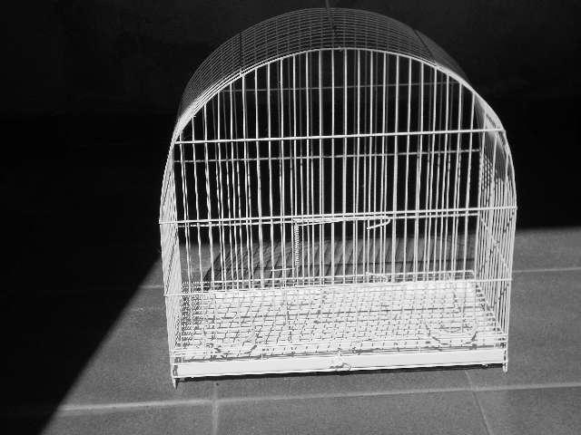 Gaiolas para canário e 2 gaiolas para hamster